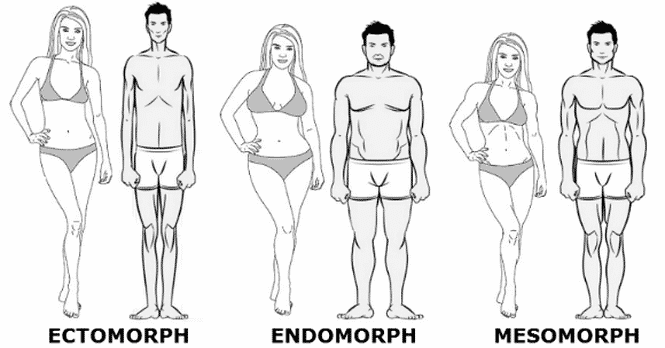 v cut tipi 5 - Hangi Vücut Tipine Sahipsiniz   Ektomorf, Endomorf veya Mezomorf